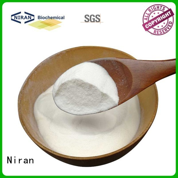 Best the safest artificial sweetener manufacturers for Nutrition industry