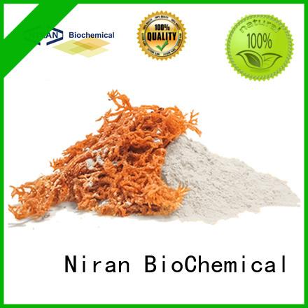 Niran cornstarch or flour for gravy company for food manufacturing